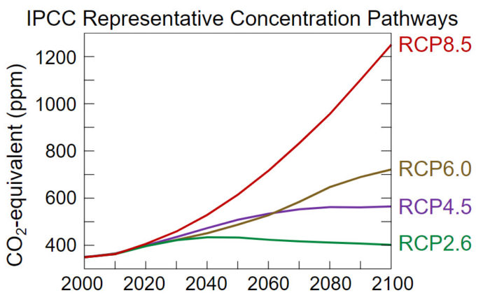 Representative concentration pathways (RCPs) from the IPCC Fifth Assessment Report (figure obtained from Wikipedia and is published under the Creative Commons CC0 1.0 Universal Public Domain Dedication.)
